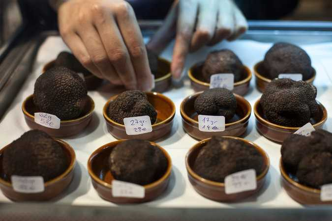 how much is one truffle