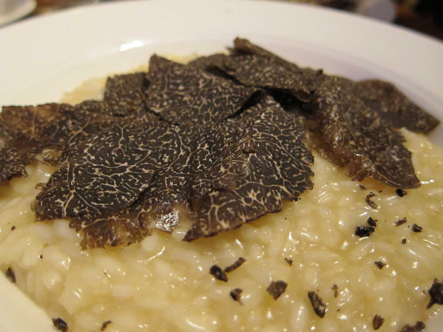 how much are black truffles